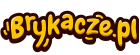 Promocja brykacze.pl